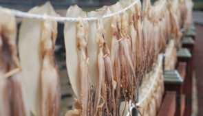 Jeju-Olle-Trail-Typical-Drying-Fish