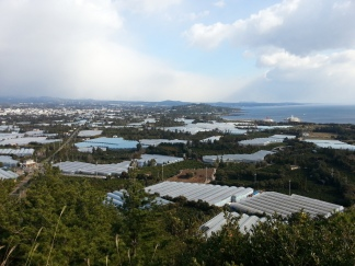 Jeju-Olle-Trail-Typical-View-Route 6 Seowipo country view