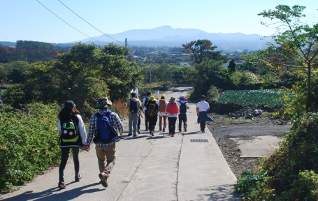 Jeju-Olle-Trail-Typical-View-Walkers and View