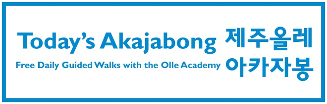 acajabong-information-daily