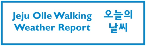 walking-weather-report-daily