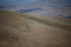 사진 04_18일 열린 몽골올레 1코스 복드항산 코스 걷는 참가자들. 초원의 야생화처럼 올레꾼들이 길 위에 핀 꽃과 같은 모습으로 걷고 있다.